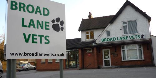 Award-winning Broad Lane Vets becomes latest practice to join the XLVet community