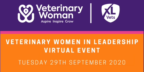 Confidence Boost for Attendees of Veterinary Women in Leadership virtual event