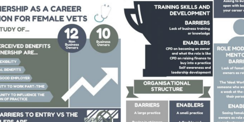 Call for participants as XLVets builds on women in leadership study with new focus groups